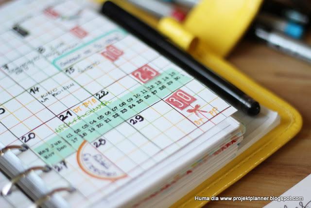 Miesięczny plan Humy